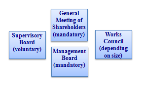 The Governance Bodies Under the Rules of the Common Regime